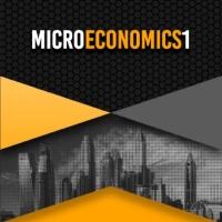 Modul Mikroekonomi 1 2019